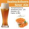 Seabuckthorn Sour Ale Наклейка для ГлавПивМаг